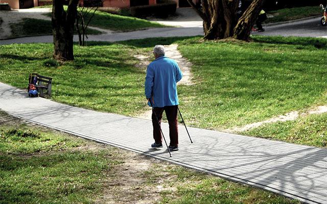Nordijska hoja za starejše