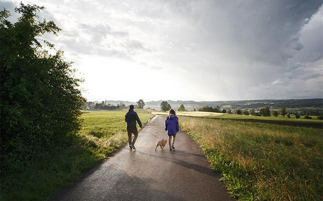 Druženje na sprehodu